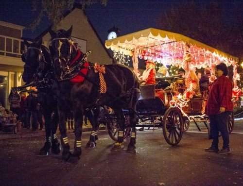 One Enchanted Evening in Clovis