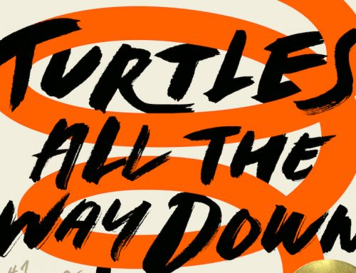 BOOK REVIEW: Turtles All The Way Down underwhelming, typical plot
