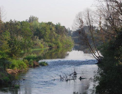 San Joaquin River Parkway encourages community involvement