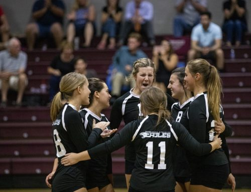 Volleyball box scores 2019