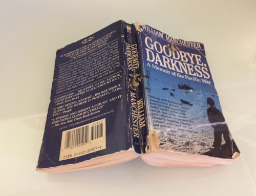 Book review: Goodbye, Darkness