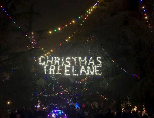 Christmas Tree Lane displays Christmas spirit since 1920