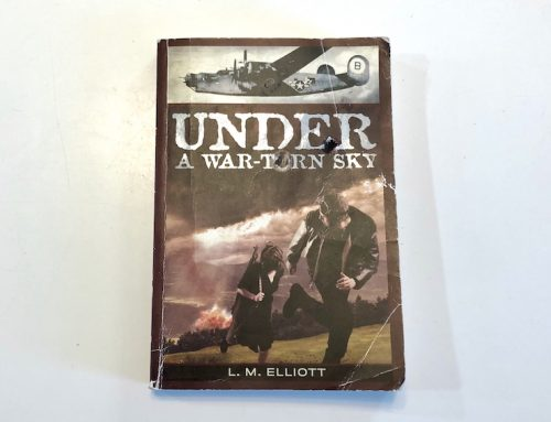 Book Review: Under a War Torn Sky
